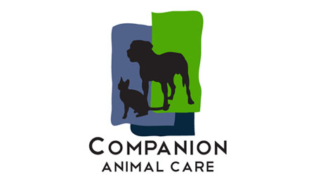 Graphic-Design-Portfolio-Kira-Brooks-Media-Ashland-Oregon-Logo-Companion-Animal-Care