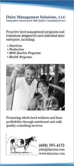 portfolio-dairy-brochure